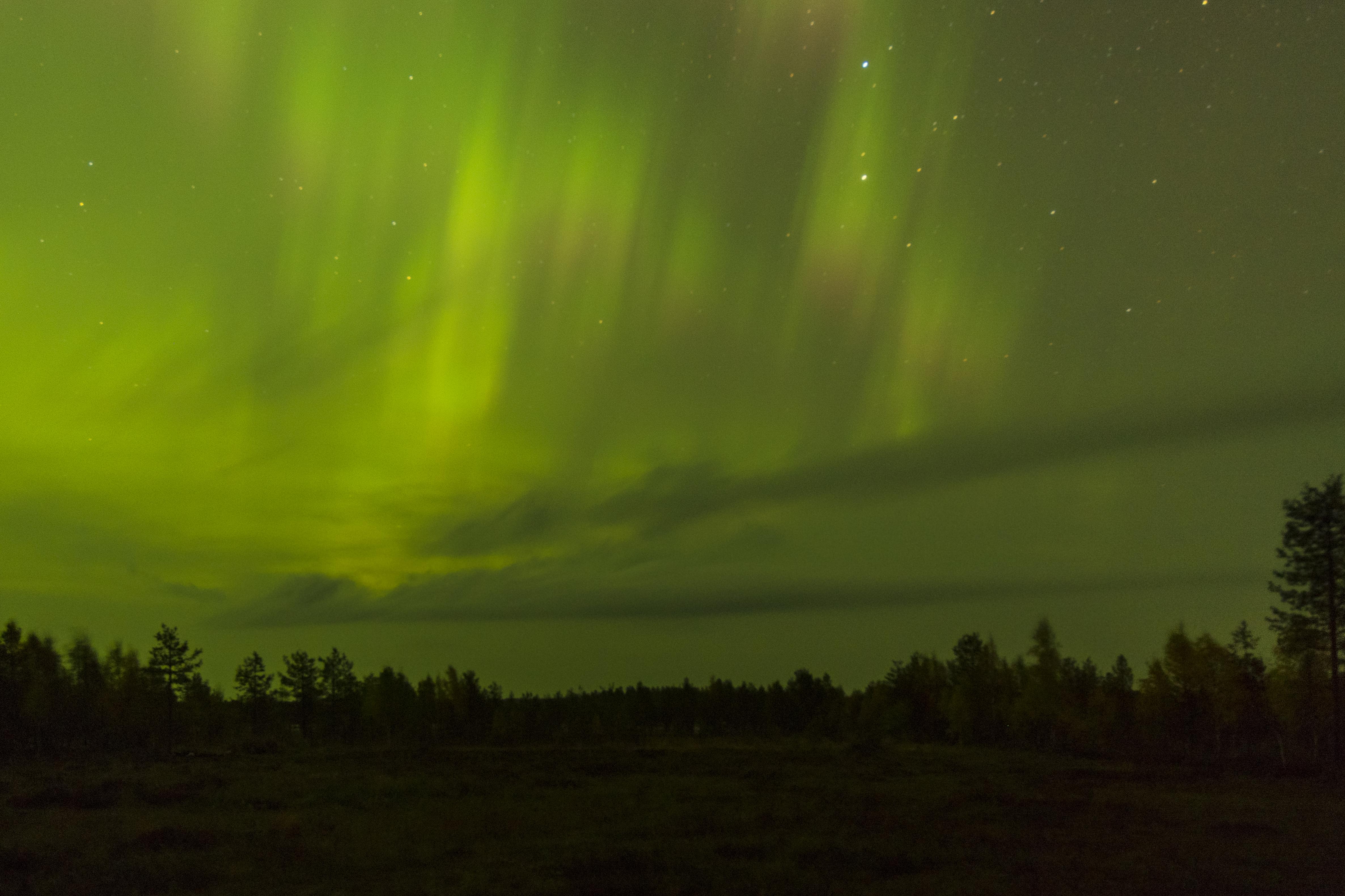 Nature_Talks-Fotoreis-noorderlicht-finland-aurora_borealis-petersmoments